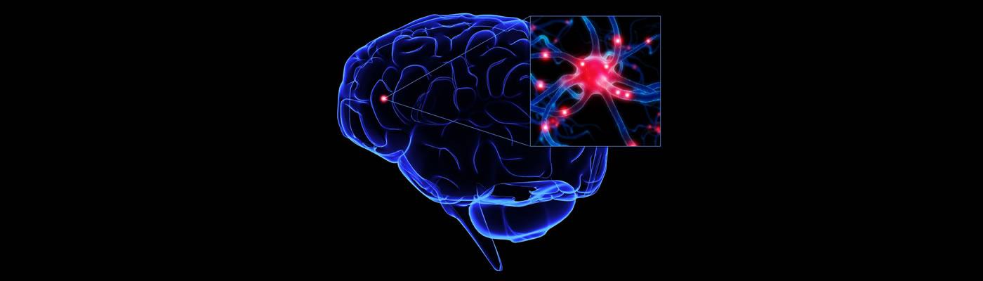 Efectos de la intensidad del ejercicio sobre el factor neurotrófico