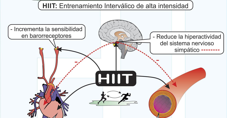 HiiT-e-hipertensión-Arterial