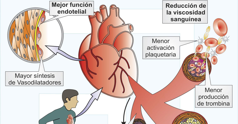 Ejercicio Físico y Perfusión Miocardia