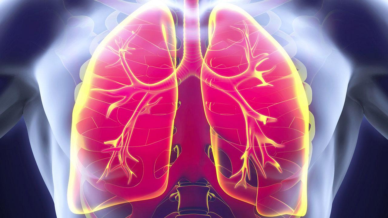 sarcopenia-en-enfermedad-pulmonar-obstructiva-crónica